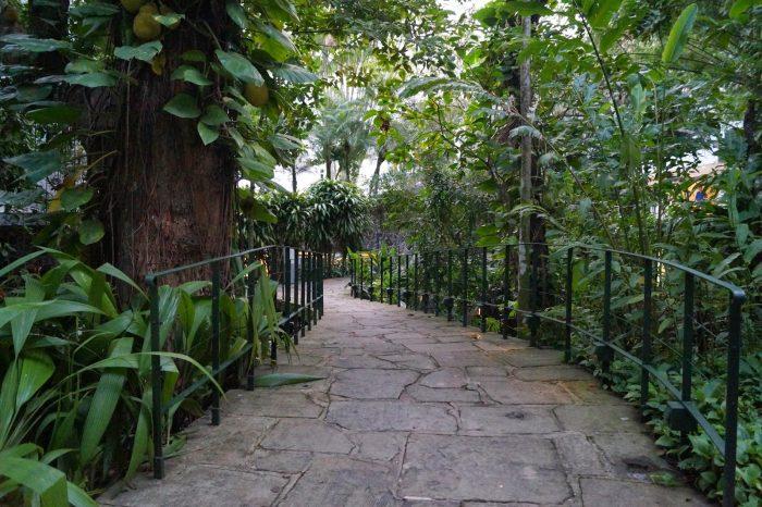 Um paraíso chamado Instituto Moreira Salles!
