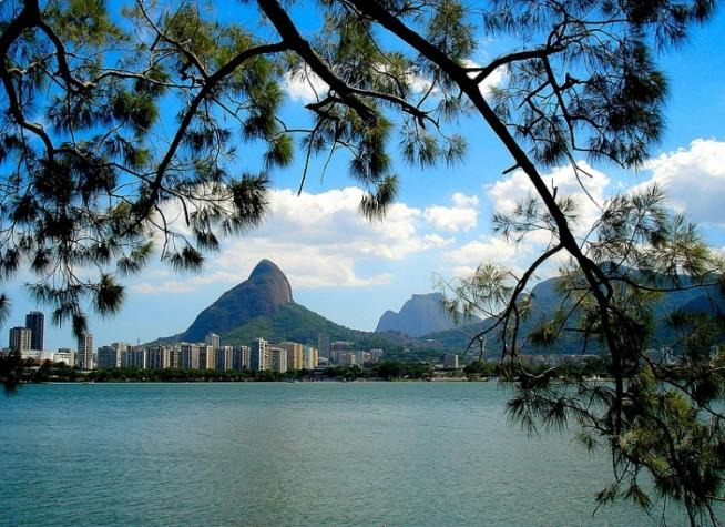 Quem planta, o mundo encanta: o Projeto Pomar da Lagoa está de volta para deixar o Rio de Janeiro mais doce!