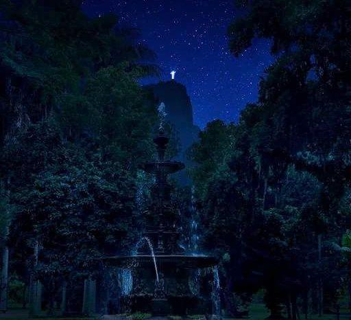 Jardim Botânico do Rio by night: programão carioca!